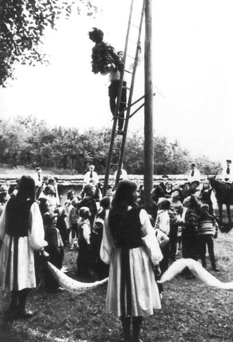 Kronenfest1